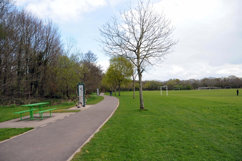 One of the four new walking trails in Ballincollig Regional Park which could be the first step in making the town a key tourist destination. The trails are being developed by Ballincollig Trails Group. Picture: Tom Doherty